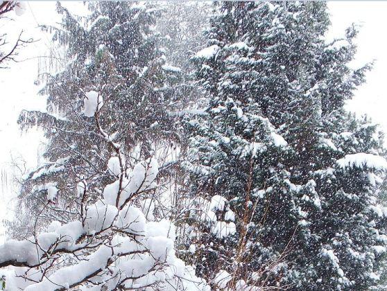 März - 11.03.2013 - Schneegestöber ...