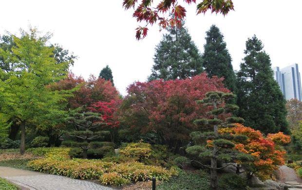 Planten un Blomen - Herbst - Rechts im Hintergrund das Radisson Blu Hotel