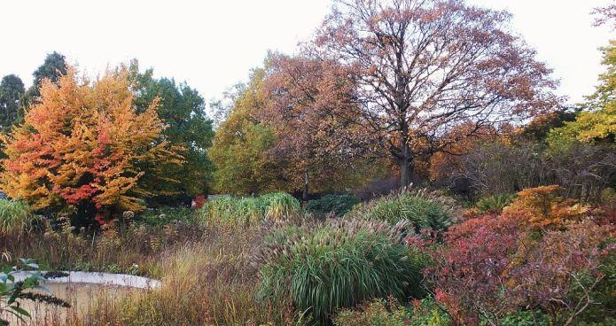 Hamburg - Herbst in Planten un Blomen - Orange- und Brauntöne ...